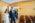 fotograf-na-slub-kielce-landshut-dingolfing-munchen-kamil-siwek